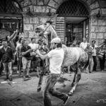 Tratta, Tratta e batterie, Federico Pannacci